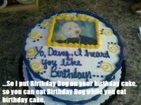 Birthday Cake Dog Meme - birthday dog know your meme
