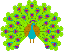 4 ways to draw an exotic peacock wikihow clip art library