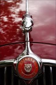 jaguar logo jaguar car symbol meaning and history car brand