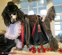 Phantom Opera Halloween Costumes Phantom Opera Dog Costume