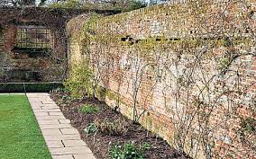 how to create an amazing garden wall telegraph