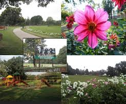Fragrant Garden Plants Garden Of Fragrance Chandigarh Tricity Events Chandigarh