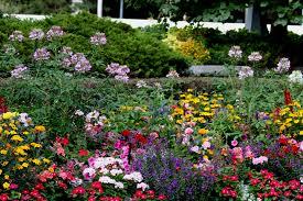 Summer Flower Garden Ideas - summer flower garden on the plaza at temple square in salt lake