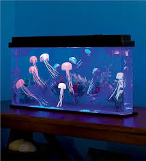 led jellyfish aquarium hearthsong