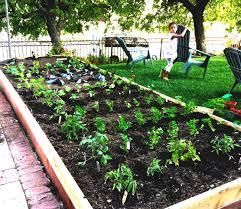 Ideal Vegetable Garden Layout Garden Design With Plan Ahead Vegetable Gardening Cool Garden Ideas
