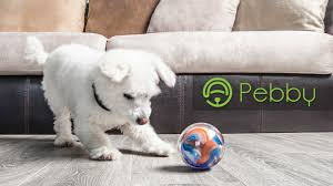 pebby the most advanced smart ball play anytime anywhere by