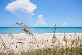 Vero Beach Rental Houses by Florida Vacation Beach Rentalsflorida Vacation Beach Rentals