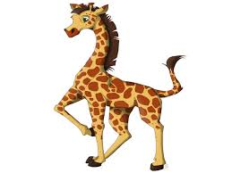 giraffe descprition and facts