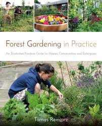 gardening picture forest gardening in practice real life forest gardens
