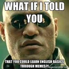 Grammar Meme - grammar memes