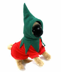 Pepper Halloween Costume Dog Halloween Costumes Red Chili Pepper Hoodie Dog Costume