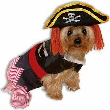Funny Halloween Costumes Dogs 37 Pirate Pet Costumes Images Pet Costumes