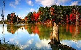 cute autumn free desktop wallpaper wallpapersafari