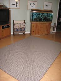 Lowes Area Rugs by Science Notebooking Teaching And Technology Carpets In The