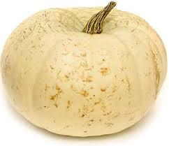 white pumpkins pumpkins lumina white information recipes and facts