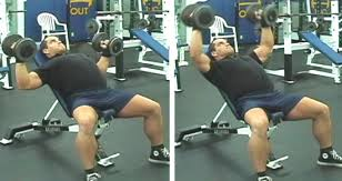 Bench Press Vs Dumbbell Press How To Build A Thick Muscular Armour Plated Chest U2013 Mass Building