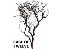 manzanita tree branches manzanita branches etsy
