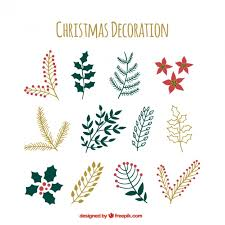 christmas plants collection of christmas plants vector free