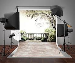 Wedding Backdrop Ebay 110 Best Photography Backdrop Fannie Images On Pinterest