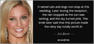wedding quotes rainy day julie quote it rained cats and dogs non stop at this