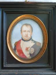 what did napoleon look like shannon selin