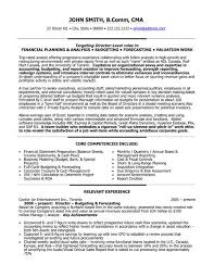sample finance resumes accountant resume sample it engineering