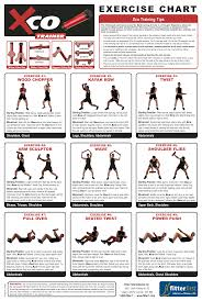 bench routines dumbbell workouts health and fitness training