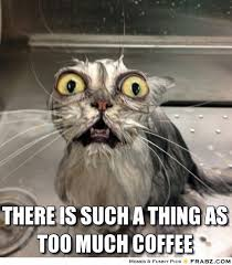 Too Much Coffee Meme - there is such a thing as too much coffee meme generator
