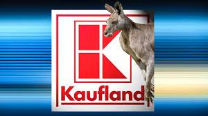 Kaufland Baden Baden Neckarsulmer Unternehmen Prüft Expansion Kaufland Bald In