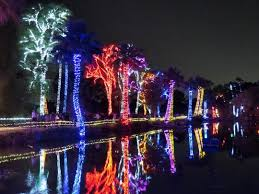 phoenix zoo lights prices phoenix zoolights and los noches de las luminarias return for 2016