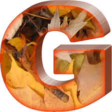 presentation alphabets fall leaves letter g thanksgiving
