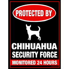 metal dog signs home decor and gifts for dog lovers funny dog signs protected by chihuahua security force monitored 24 hours