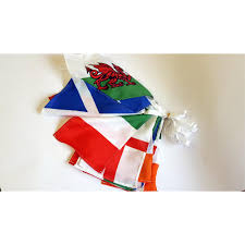 Car Flag Team Car Flag And Champion Hurleys For Gaa Flags Munster Rugby