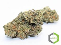 wedding cake og online menu san diego delivery service san diego collective