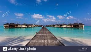 water bungalows on paradise island or lankanfinolhu indian ocean