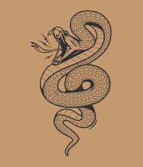 best 25 snake tattoo ideas on pinterest black snake tattoo
