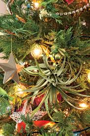 slowing down with new christmas traditions in texas southern living