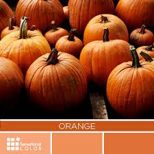 orange and color color meaning symbolism and psychology archives sensational color