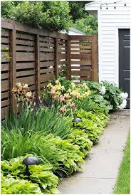 backyards winsome backyard ideas for privacy creative ideas for