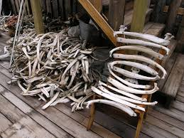 bone chairs and coal tables world u0027s 6 creepiest furniture pieces