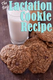 where to buy lactation cookies the best lactation cookies recipe richly