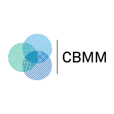 center for brains minds and machines cbmm youtube