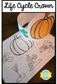 pumpkin life cycle freebie kindergarten pinterest pumpkin