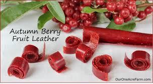 fruit edibles edibles archives