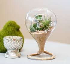 Pear Home Decor Trend Decoration Looking Glass Ts In Australia Garden Design For