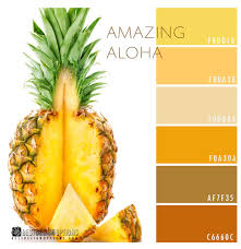 tropical colors for home interior inspiring tropical color schemes 19 for home design modern with