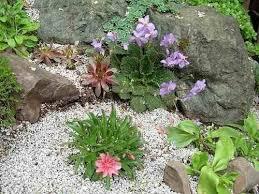 giardini rocciosi in ombra creare un giardino roccioso giardini orientali