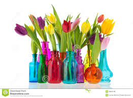 Tulip Vases Colorful Tulips In Glass Vases Royalty Free Stock Photos Image
