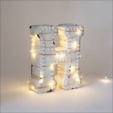furniture magnificent string lights where to buy led