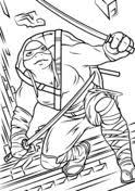 raphael teenage mutant ninja turtles shadows